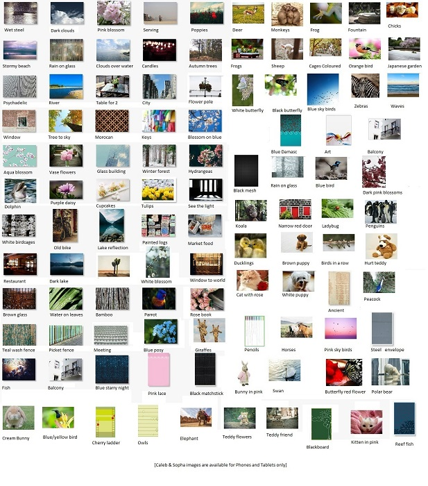 jwprint laptop theme