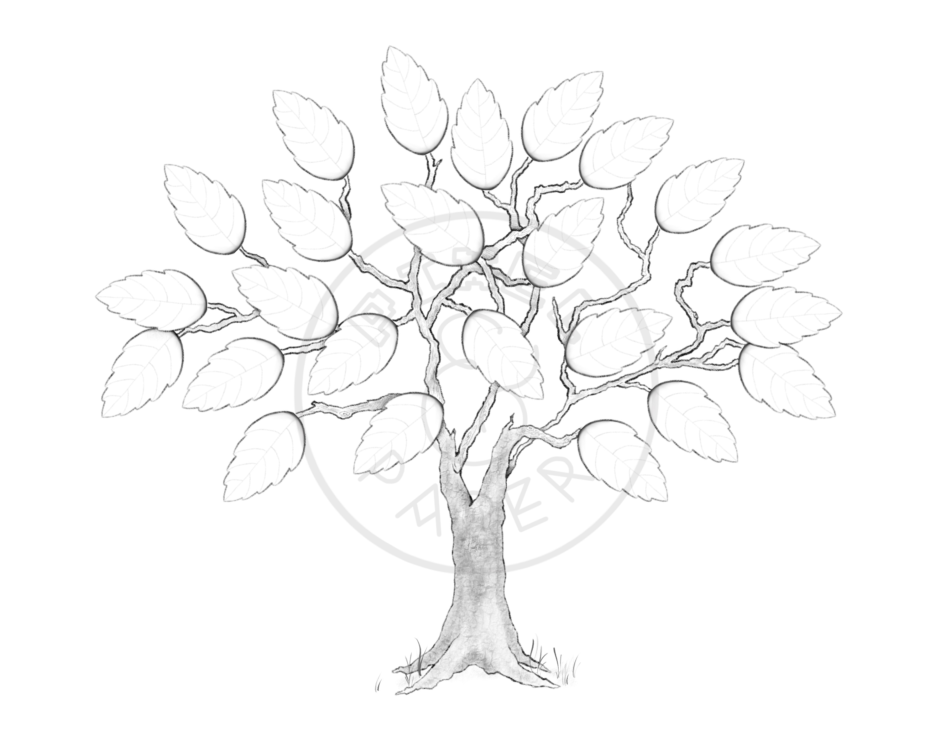 signature tree guestbook i shop jw Jehovah's Witnesses Pioneer School signature tree guestbook signature tree guestbook