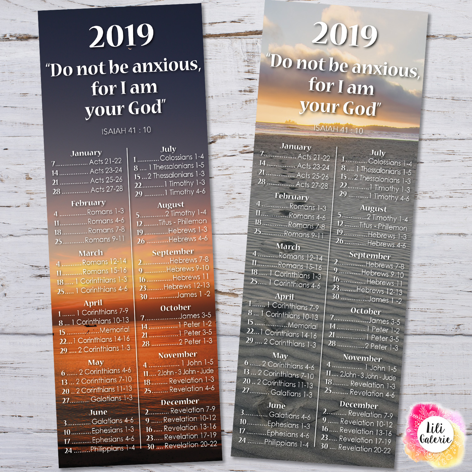Bookmarks 2019 Bible Reading Schedule + Yeartext - Printable file