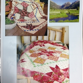 """Mimi's Meadow"" 64″x84″ Quilt Kit by Seams & Dreams"