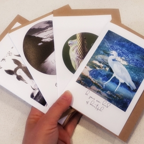 Greeting Cards – Blank Inside