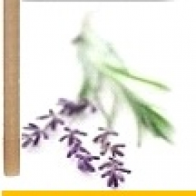 10 Pack Lavender Beeswax Ear Candles