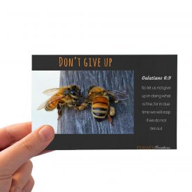 Bee Budy Dont Give Up_Gal 6_HAND BGD