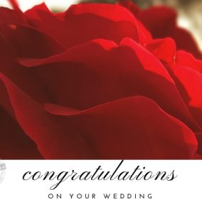 Congratulations_Red Rose_Wedding