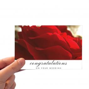 Congratulations_Red Rose_Wedding_HAND BGD