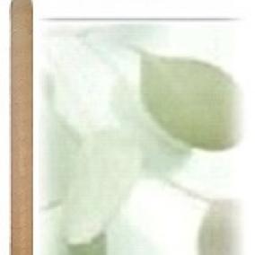 10 Pack Eucalyptus Beeswax Ear Candles