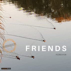 Friends Forever_Sunset Ducks WM