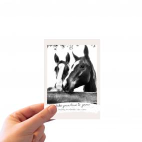 Horse Wisdom_Postcard_HAND BGD
