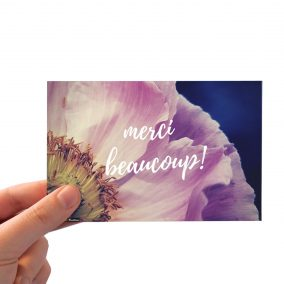 Merci Beaucoup_Pink poppy_HAND BGD