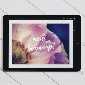 Merci Beaucoup – Digital Thank You Card