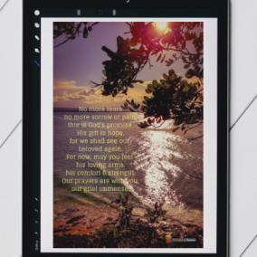 Sympathy – Digital Card