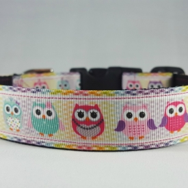 Pastel Owls Dog Collar- Medium/Large