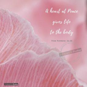 Pink poppy_Prov 14v30