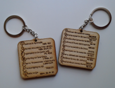 Pioneer Life / Vida Precursor Key chain