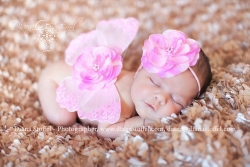 Pink Butterfly Wings, Newborn Photo Prop, Ready To Ship